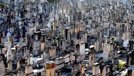 cementerio-de-palma
